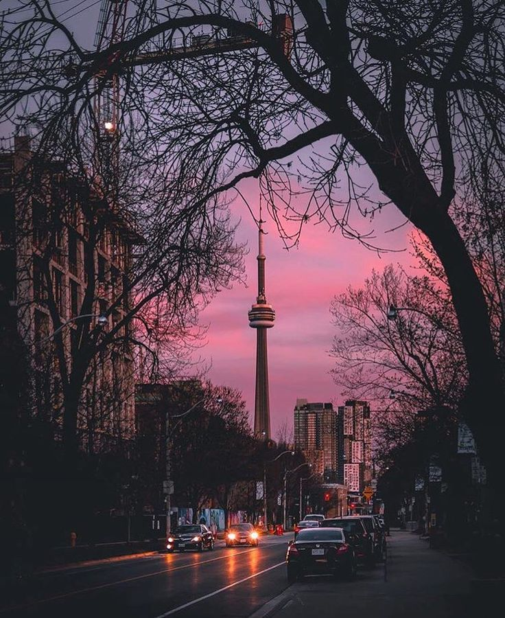 TORONTO | THE 6IX  (@6ixlifestyle_) • Instagram photos and videos