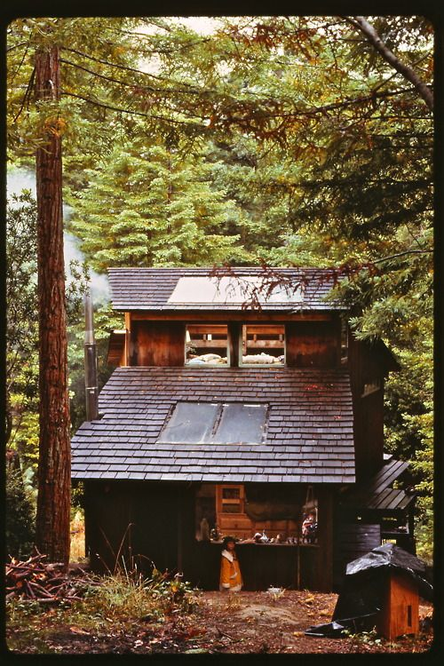 cabinporn:  From Dick Whetstone:  I built this hillside cabin in 1974 in the redwoods near Mendocino, CA, using framing recycled from an old chicken ranch and home-milled siding and shingles. The skylights were tempered plate glass seconds from a sliding door company. My daughter wanted to play with her dollhouse, but it was raining.