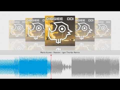 Mario Aureo - Passion - Igor The Koi Remix