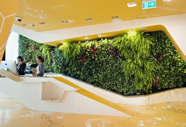 Green Fortune, plantwall in dentist office Berlin, vertical garden, groene wand, Pflanzenwand,