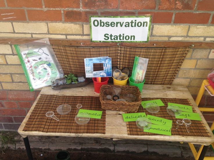 Observation station, observe mini beasts, plants, herbs with magnifying glasses, pots, cloud viewers/windows Love the idea of giving adjectives that they could use to describe the objects. Maybe have an anchor chart to list these.