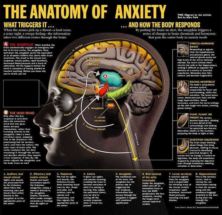 Having some anxiety can actually be good for us, because it helps us be alert when we're in different or stressful situations, but it can be a problem when these symptoms start interfering with your