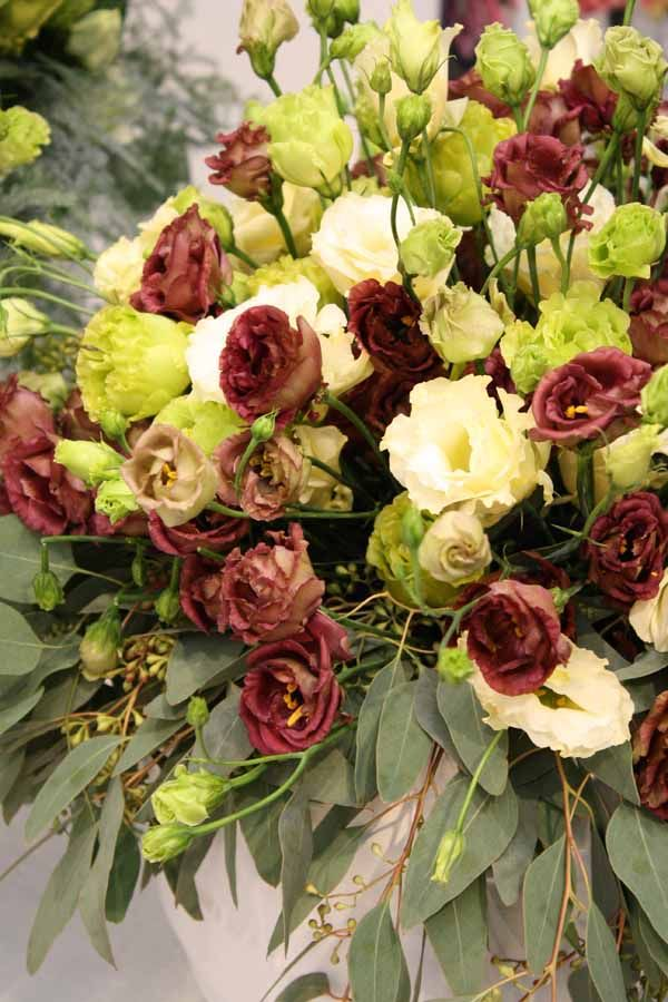 I never liked the maroon Lisianthus. However, good color combination changes my bias ….
