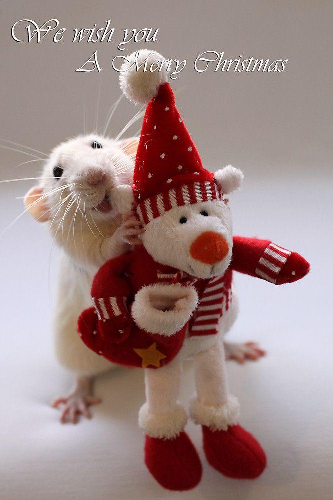 Wishing You All A Merry Christmas By Ellen Van Deelen