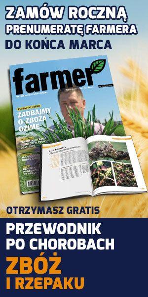Orkisz to dawna forma pszenicy, którą powszechnie uprawiano w Europie Północnej, także w Polsce, jeszcze 100 lat temu. Dzisiaj przeżywa on swój renesans, ale uprawa orkiszu jest bardzo kłopotliwa.