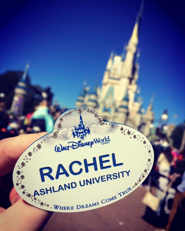 Things I Wish I Knew Going Into The Disney College Program