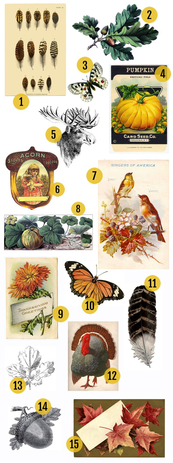 Vintage Fall Clip Art Round Up! From Maggie Holmes blog - her favorite free fall vintage images with links to each one.