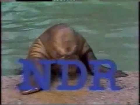 Antje (NDR, 1985) - (0:51)