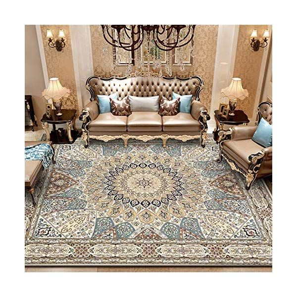 10+ Most Popular Thick Rug For Living Room
