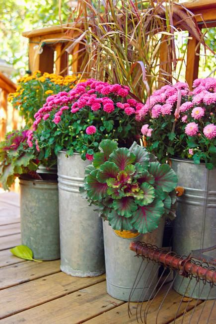 Outdoor Fall Decorating with Mums | Midwest Living