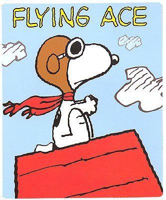 Peanuts Snoopy Flying Ace Fleece Throw Blanket