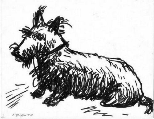 "Victor Shmokhin. ""Скотч -терьер клоуна Карандаша""1970г Бумага/фломастер. 20,9х26,7. .( №3,861)."