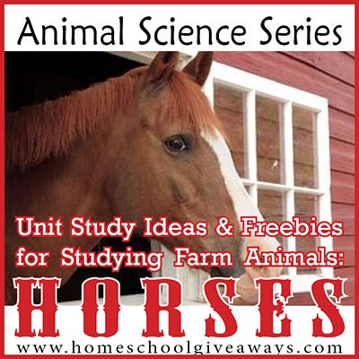 Animal Science Series: Unit Study Ideas and Freebies for Studying Farm Animals: Horses!