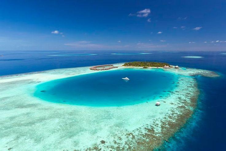 Baros Maldives - UPDATED 2017 Prices & Resort Reviews (Baros Island) - TripAdvisor