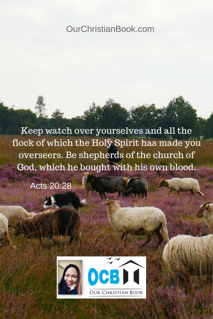 Keep watch over yourselves and all the flock of which the Holy Spirit has made you overseers. Be shepherds of the church of God, which he bought with his own blood. (Acts-20:28)