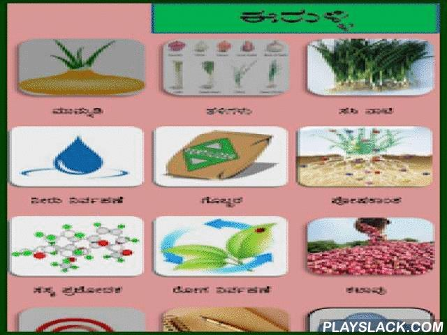Onion Kannada  Android App - playslack.com ,  This is agriculture mobile apps developed for the farmers. These apps equipped with high end analytics and decision support system with local language support. Aps are very intuitive with interactive audio video content. These are designed to deliver the information by breaking literacy barrier. For more details please contact info@jayalaxmiagrotech.comPh:+91-8861888390