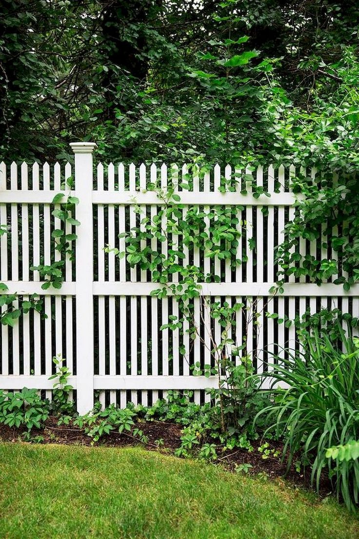 70 Simple Easy Nail Designs For 2018: 70+ Simple Cheap DIY Privacy Fence Design Ideas