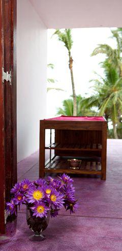 Underneath The Mango Tree Spa & Beach Hotel Resort Sri Lanka