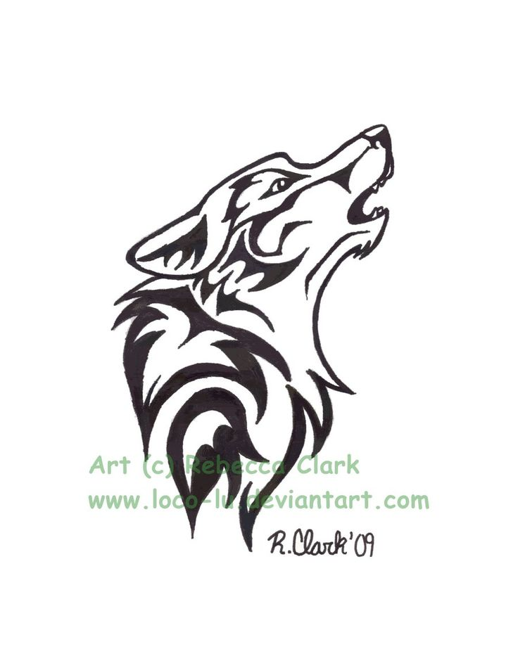 43 best coyote tattoo drawings images on pinterest coyote tattoo tattoo drawings and tattoo. Black Bedroom Furniture Sets. Home Design Ideas