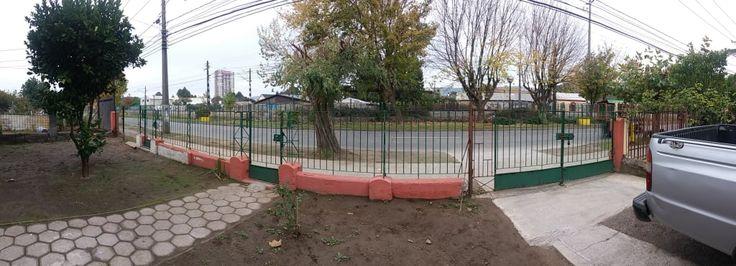 Hanno costruito la recinzione e il cancello con le loro mani: risultato fantastico! (di Anna Francioni)