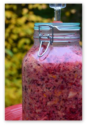 Fermented cranberry-orange-apple relish