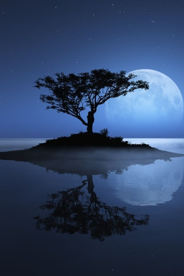 Dream...Dreams, Nature, Beautiful, Bluemoon, Reflections, Islands, Trees, Blue Moon, Moon Garden