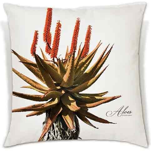 These soft, beautiful cushions celebrate the vibrant beauty of the crown of Africa's plant kingdom. | R340 - R380