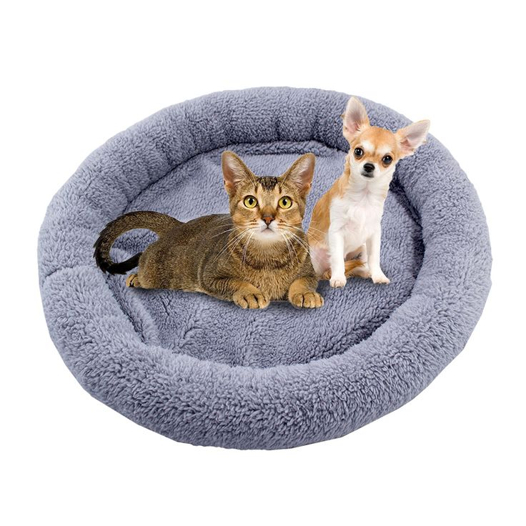 Free shipping  to global 2016 New Superior good quality Far Infrared Heating pet bed dog mat heated cushion(CE&ROHS approved)