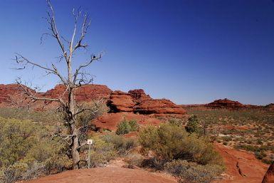Australian outback | the australian outback is a strange beast part desert part simple ...