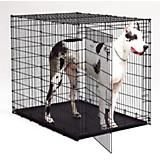Big dogs need a big crate that can stand up to the challenges of a large breed. The Midwest® Starter Series Large Dog Crate was specifically designed for dogs over 110 pounds. It's one of the most durable and affordable large breed crates we've found, and it's easy to assemble. Even a Great Dane is no match for this robust training tool!