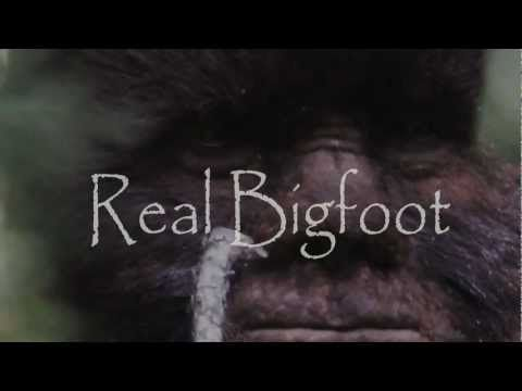 Incredible Bigfoot footage.  Todd Standing's 2011 Sylvanic Sasquatch compilation.