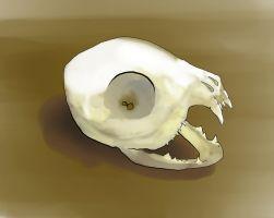 Little Carnivore Skull by Joy-Bird