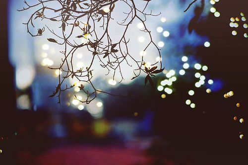 City lights photography, Light photography and City lights on ...