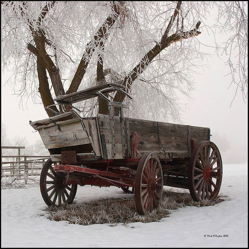 .Winter Wagon, Wagon Wheels, Christmas Pictures, Snow, The Farms, Winter Wonderland, Old Wagon, Country Farmhouse, Antiques