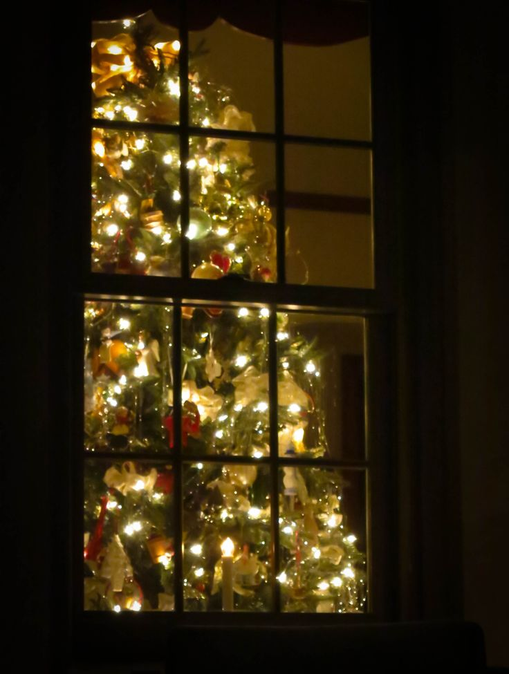 A Christmas Tree Winks Through A Window In A Somerset