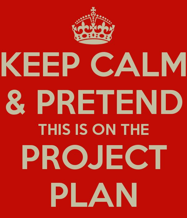Birthday party project management