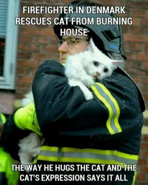 Awesome Firefighter!