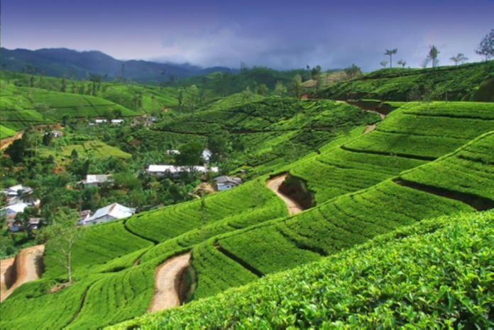 Sri Lanka Tourism roadshow targets residents in Gulf – Saudi Gazette  Travel @VisitSriLanka.com  https://visitsrilanka.com/travel/sri-lanka-tourism-roadshow-targets-residents-in-gulf-saudi-gazette/ - #Bahrain, #Kuwait, #MiddleEast, #Oman, #SriLankaTourismPromotionBureau, #Travel, #TravelGoogleNews, #VisitSriLankaCom