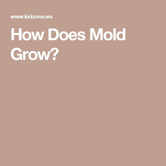 How Does Mold Grow?