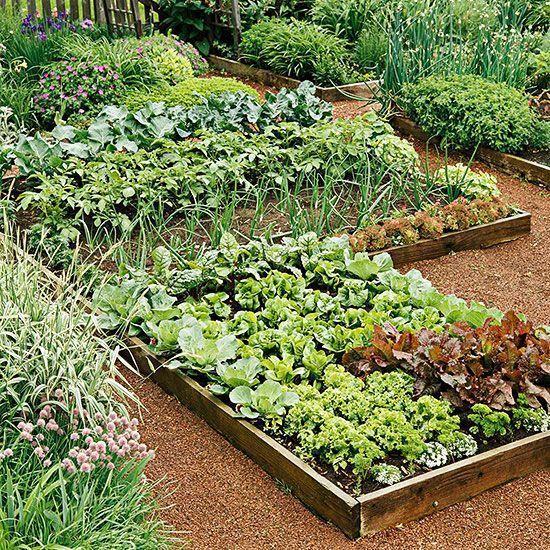 Die ultimative Schritt-für-Schritt-Anleitung für den Gemüsegarten