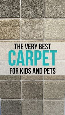 Carpet that is kid and pet proof!! No more smelly accidents soaking into the carpet pad where they stink forever!