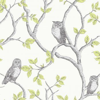 Fine Decor Woodland Owls Green / Grey / Cream - Fine Decor from I love wallpaper UK