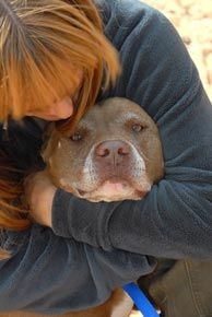 Saving Pit Bulls..giving a breed a chance is what pitbulls do with humans because we teach them. Mine catches my tears and is always by my side.
