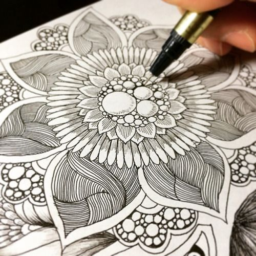 Flower drawings step by step. by Takao Miura