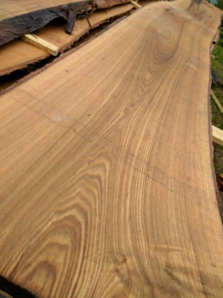 """natural edge slabs for sale. common species available: birch, ash, cedar, pine, poplar, spruce and others. beautiful slabs that you cannot buy at any lumber store. being sold at a fraction of commercial prices. thickness from 1-3"""" usually in stock. can mill thicker upon request. boards available between 6-24"""" wide. all sustainable, local harvested trees. logs have bee"""