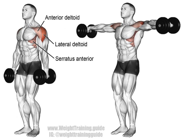 Dumbbell lateral raise exercise illustration