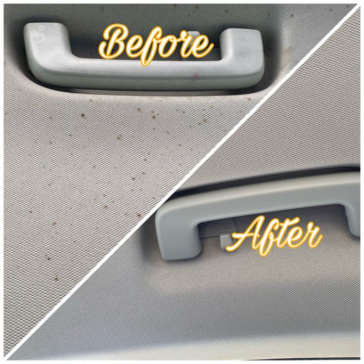 Car headliner stain removal in 2020 car wash company