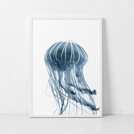 Jellfyfish Print Blue Jellyfish Wall Art Jellyfish Photography Sealife Poster Minimalist Blue Jellyfish Photography Scandinavian Print In 2021 Jellyfish Wall Art Animal Wall Art Jellyfish Photography