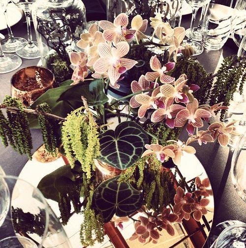 Darlinghurst Florist