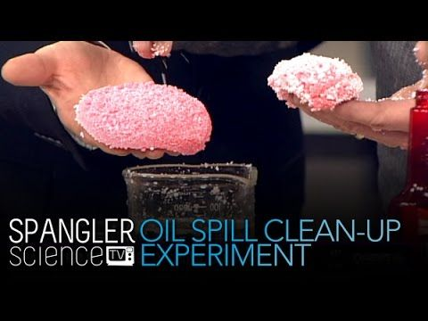 Oil Spill Clean-up Experiment - Cool Science Experiment